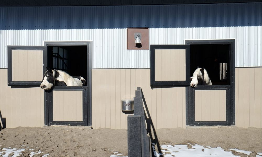 What To Consider When Building a Horse Barn